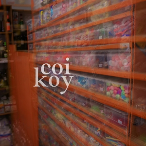 CandyStore_coikoy